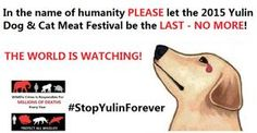 Make The 2015 Yulin Dog Meat Eating 'Festival' the LAST EVER!