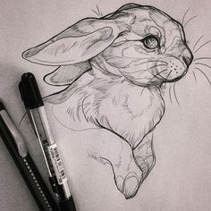 Learn to draw animals drawing animal & creatures art sketche Bunny Sketches, Animal Sketches, Animal Drawings, Pencil Art Drawings, Art Drawings Sketches, Cool Drawings, Tattoo Sketches, Art Sketchbook, Art Inspo