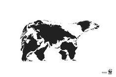 L'agence de communication et son ours, acteur engagé pour la protection de l'environnement