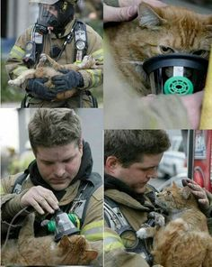 """The look in his eyes says """"thank u for saving me""""."""