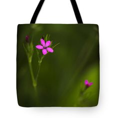 """Deptford Pink Tote Bag by Christina Rollo (18"""" x 18"""").  The tote bag is machine washable, available in three different sizes, and includes a black strap for easy carrying on your shoulder.  All totes are available for worldwide shipping and include a money-back guarantee."""