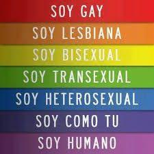 Resultado de imagen de no a la homofobia