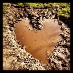 <3 mud