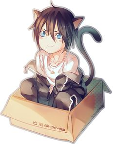 Noragami Aragoto || Repin for Yato cat ~ Review here: http://www.animedecoy.com/2016/01/NoragamiAragoto.html ~