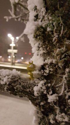 Alien winter in Norway