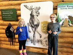 Denali National Park Junior Ranger Badge for Kids Alaska National Parks, Glacier Bay National Park, Tongass National Forest, Visit Alaska, Kenai Fjords, Cruise Excursions, Norwegian Cruise Line, Helicopter Tour, Alaska Cruise