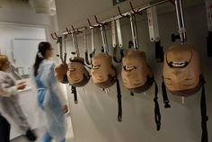 California Dental Hygiene Degree Programs in Dental Lab Technician