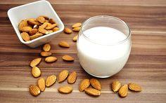 5 receitas de leite vegetal - EscolhaVeg.com.br
