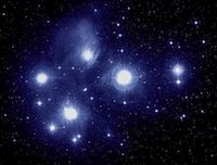 Matariki, the Maori New Year, is rich with tradition. Discover the importance of Matariki, and explore ways that you can celebrate the Maori New Year with