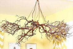 Kim Myles crafts an adorable chandelier from old rustic branches. For more of her clever DIY projects, visit P&G everyday today!