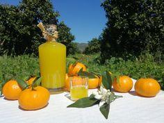 Il mandarinetto è un liquore che viene preparato con i mandarini. Qui la ricetta dei nostri amici di Castiadas dell'Azienda Agrumicola Masone Pardu.  #agrumi #liquore #distillato #mandarino Get In Shape, Pumpkin, Shapes, Outdoor, Alcohol, Getting Fit, Outdoors, Pumpkins, Outdoor Games