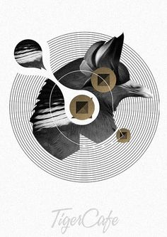 Animal Collage Party Posters by Vlada Stevanovic | Minimo Graph
