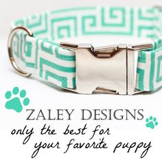 Dog Collar in Turquoise and White for Female or Girl dog with metal buckle on Etsy, $25.00