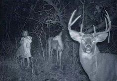 Trail Camera Discoveries