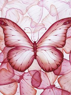 Rose Pink Butterfly - Art of Christina Meeusen Butterfly Painting, Butterfly Wallpaper, Butterfly Print, Pink Painting, Watercolour Painting, Purple Butterfly, Butterfly Cards, Printable Butterfly, Art Carte