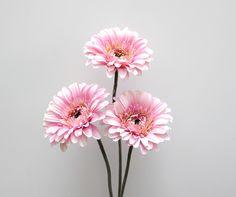 Flores   ArtLilac