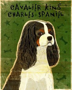 Cavalier King Charles Spaniel TriColor Print 8 in x by johnwgolden, $18.00