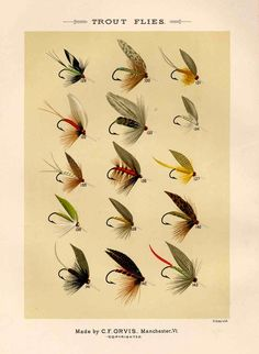 trout flies glorious fly fishing print no. 1. $12.50, via Etsy. @Brian Flanagan Flanagan Johnson would like this