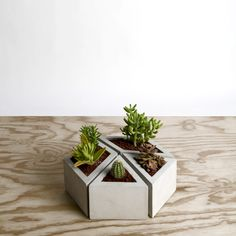 Muuch 1.  Conjunto de cuatro macetas de concreto, dos en rombo y dos en triángulo,  que juntas conforman distintas figuras geométricas. Diy Concrete Planters, Cement Planters, Concrete Crafts, Concrete Projects, Concrete Design, Modern Candles, Succulent Planter Diy, Flower Wall Decor, 3d Prints