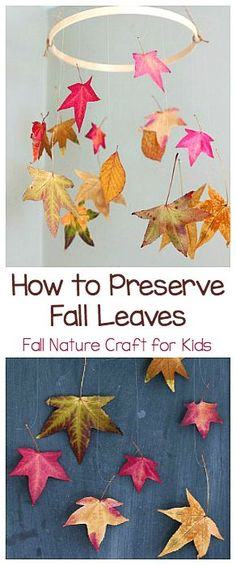 817 Best Fall Crafts And Activities For Kids Images On Pinterest In