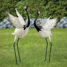 This item contains the following: - Red Crowned Cranes - Stretching High, Measures 39 high. - Red Crowned Cranes – Bowing, Measures 37 high. The elusive red crowned cranes are among the largest and rarest cranes in the world. These endangered birds engage in a elaborate dance with wing flapping and calling to one another when courting a mate. Known to be a symbol of luck, longevity and fidelity, these metal sculptures illustrate their complex dance for a captivating statement in your...