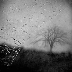 This Sad Journey - Leda Siloto