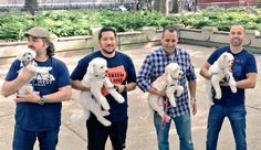 TWO things I LOVE!!!  Puppies AND Impractical Jokers