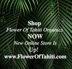 #shoponline #organic #Hairmask #VeganHairCare #deepconditioningtreatment Deep Conditioning Treatment, News Online, Tahiti, Conditioner, Organic, Flowers, Florals, Royal Icing Flowers, Blossoms