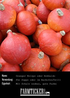DER Suppenkürbis schlechthin! Sehr lecker und hübsch in der strahlenden Farbe! Einer der populärsten Kürbisse auf unseren Höfen.   Weitere Infos zu allen möglichen Kürbissorten findest du im Link! Orange, Good People, Peach, Fruit, Cooking, Link, Food, Carving Pumpkins, Hokkaido