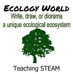 There are many terms that we use to describe the ecology of an area. The student task is to practice using these terms in context by explaining (or creating) an ecosystem. Product includes an answer key of terminology for teacher and/or student use. Vocabulary sheets can also be used as a separate handout.