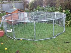 Our new chicken run. Yes that is our old trampoline frame. I used 30m of chicken wire and about 200 zip ties to cover it. I used the poles for the safety net to fill in the spaces between the legs. Then pulled the chicken house up to a gap i left in the wire and bungeed that to the run. Now the girls should be safe from the neighbours dogs!