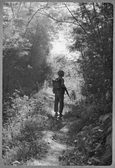 A beautiful photograph of a lone soldier on patrol in a forest clearing. ~ Vietnam War