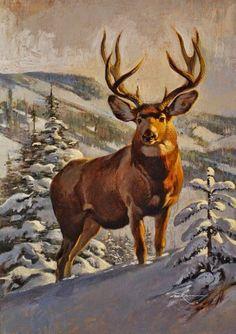 Elk Pictures, Deer Photos, Pictures To Draw, Wildlife Paintings, Wildlife Art, Animal Paintings, Whitetail Deer Pictures, Deer Head Silhouette, Deer Art