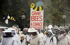 bee march