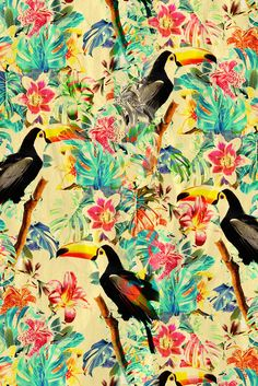 collage tropical - 10/01/14
