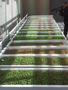 """Rooftop Farming Grows at New Bronx Housing Project: Built on top of a new affordable housing development, this project could be the first example of commercial hydroponic agriculture integrated into a residential structure."" (via Agri-Tecture.com)"