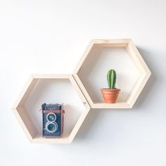 Small hexagon shelves in our bare finish Hexagon Shelves, Small Potted Plants, Staining Wood, Shelves, Geometric Shelves, Trending Decor, Stud Walls, Home Decor, Home Collections
