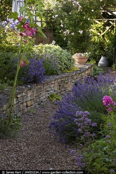 Nice short stone wall perfect to sit on or to retain a flower bed.