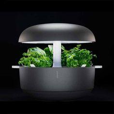 Smart Garden från Plantui är en produkt för inomhusodling i hydrokultur-vattenodling för att odla kryddor, sallad och annat gr...
