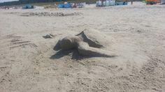Sand sculpture. Debki beach... Poland.  Rob Roy... Two sea Turtle...