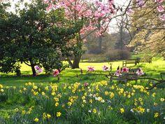 Kew Gardens, i giardini botanici patrimonio dell'umanità - Londra #giardinidalmondo