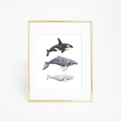 Humpbacks, orcas and beluga whales - this print has them all! Digital downloads are a simple and thrifty way to decorate your home in style.