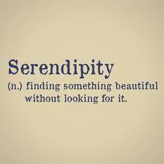serendipity | ZsaZsa Bellagio - Like No Other