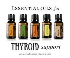 The thyroid is small butterfly-shaped organ that plays a mighty role in your health. There are several essential oils for thyroid support ...