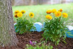 DIY jardín árbol de la frontera, jardinería, vida al aire libre