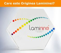 Laminine provides the most essential proteins and amino acids our body needs. Laminine is Usa Health, Embryonic Development, Increase Stamina, Stress, Capsule, Stem Cells, Healthy Living Tips, Product Offering, Our Body