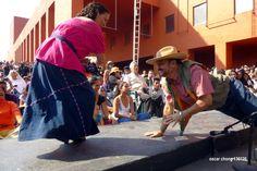 130126. Centro Nacional de las Artes. Festival de Son Jarocho 3