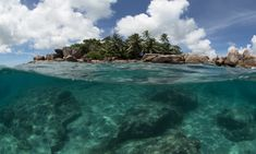 With deep blue waters, white sand beaches and rich marine life, the tiny island nation of the Seychelles is announcing a pioneering marine conservation plan as part of a debt swap deal with creditors. Tax Haven, Clean Ocean, Seychelles Islands, Save Our Earth, Save Our Oceans, Marine Conservation, Island Nations, Marine Life, The Guardian