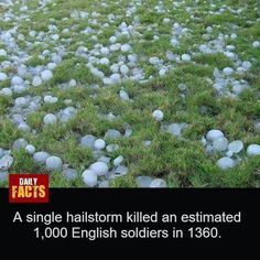 Hail Storm, Daily Facts, Stepping Stones, Outdoor Decor, Stair Risers