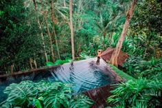 COMO Shambhala Estate's Ayurveda Retreat Takes Personalisation To The Next Level Bali House, Deep Forest, Tropical Paradise, Pool Designs, Ayurveda, South America, Lush, Spa, Luxury Resorts